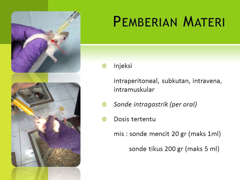 P EMBERIAN M ATERI  Injeksi intraperitoneal, subkutan, intravena, intramuskular  Sonde intragastrik (per oral)  Dosis tertentu mis : sonde mencit 2