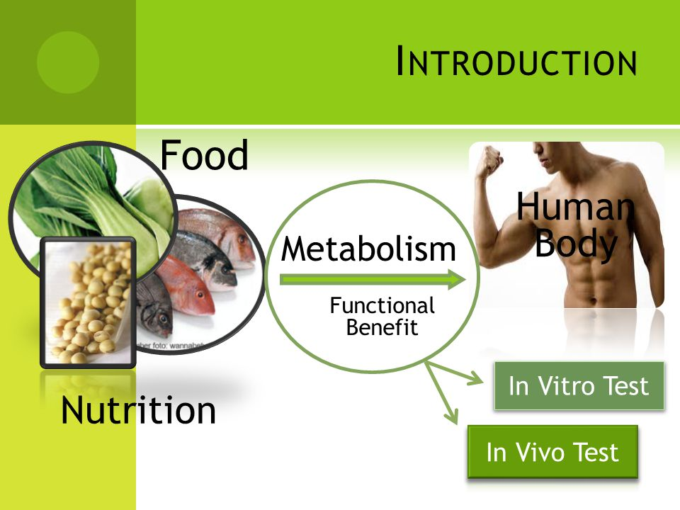 I NTRODUCTION Food Metabolism Nutrition Functional Benefit Human Body In Vitro Test