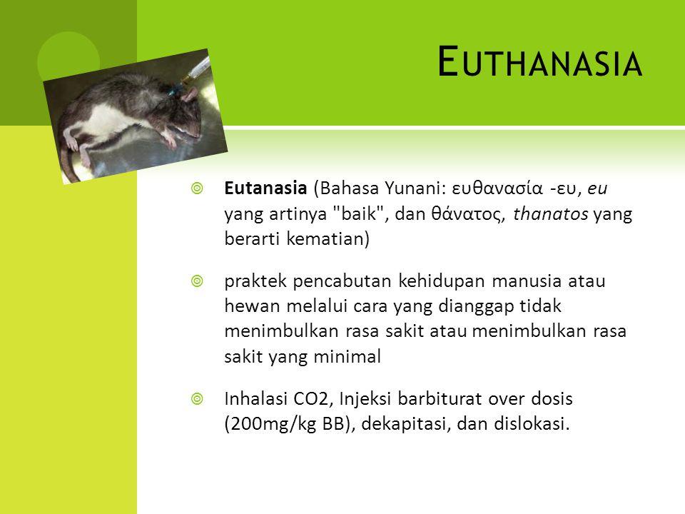 E UTHANASIA  Eutanasia (Bahasa Yunani: ευθανασία -ευ, eu yang artinya