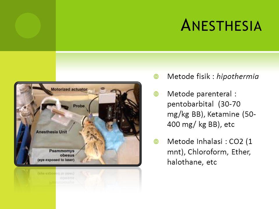 A NESTHESIA  Metode fisik : hipothermia  Metode parenteral : pentobarbital (30-70 mg/kg BB), Ketamine (50- 400 mg/ kg BB), etc  Metode Inhalasi : C