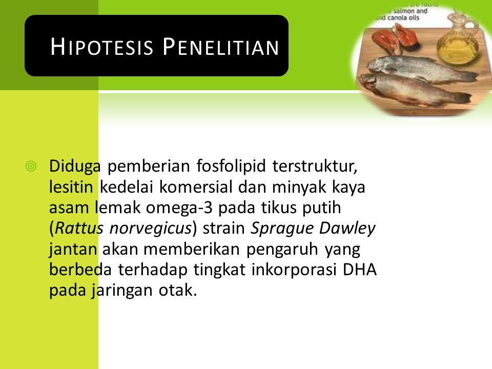  Diduga pemberian fosfolipid terstruktur, lesitin kedelai komersial dan minyak kaya asam lemak omega-3 pada tikus putih (Rattus norvegicus) strain Sp