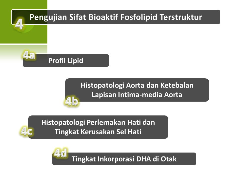 Pengujian Sifat Bioaktif Fosfolipid Terstruktur Profil Lipid Tingkat Inkorporasi DHA di Otak Histopatologi Aorta dan Ketebalan Lapisan Intima-media Ao