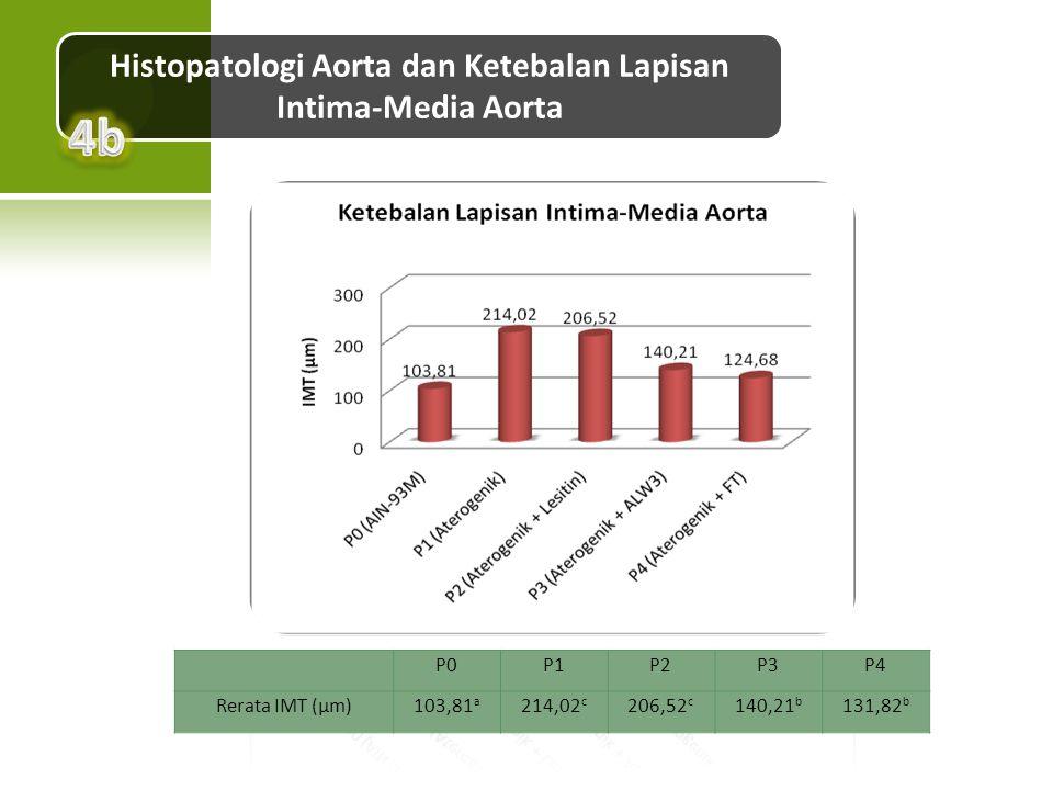 Histopatologi Aorta dan Ketebalan Lapisan Intima-Media Aorta P0P1P2P3P4 Rerata IMT (µm)103,81 a 214,02 c 206,52 c 140,21 b 131,82 b