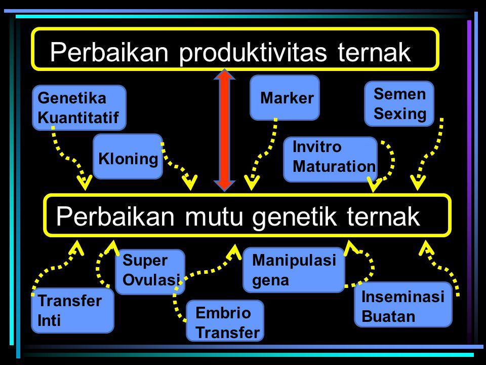Perbaikan mutu genetik ternak Perbaikan produktivitas ternak Genetika Kuantitatif Inseminasi Buatan Marker Transfer Inti Manipulasi gena Kloning Embri