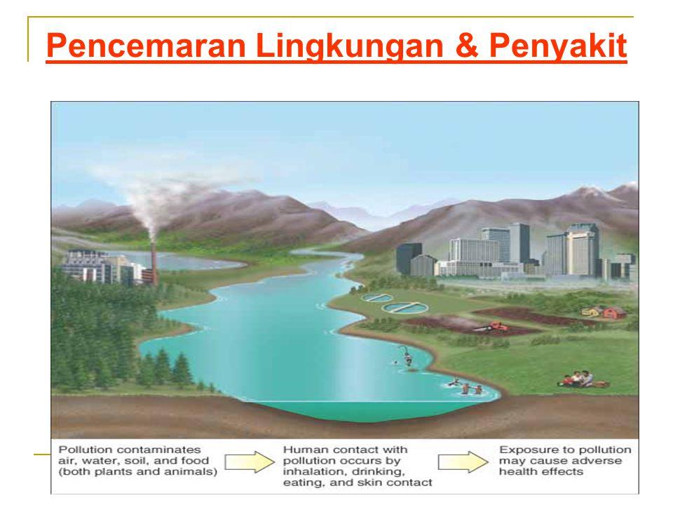 Pencemaran Lingkungan & Penyakit
