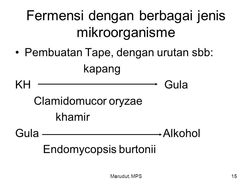 Marudut, MPS15 Fermensi dengan berbagai jenis mikroorganisme Pembuatan Tape, dengan urutan sbb: kapang KH Gula Clamidomucor oryzae khamir Gula Alkohol
