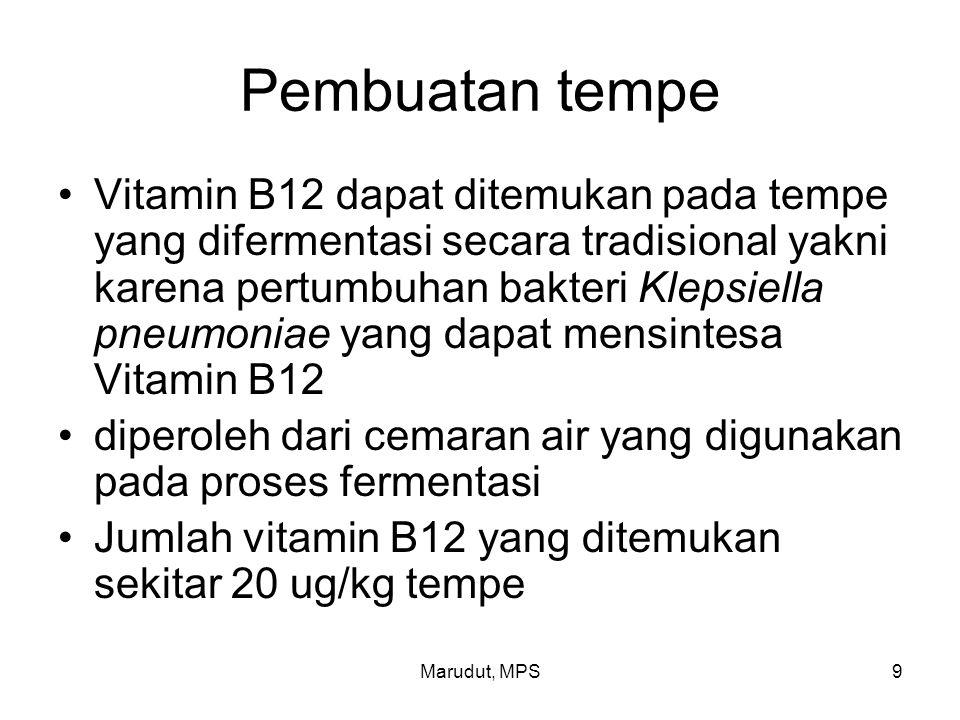 Marudut, MPS9 Pembuatan tempe Vitamin B12 dapat ditemukan pada tempe yang difermentasi secara tradisional yakni karena pertumbuhan bakteri Klepsiella
