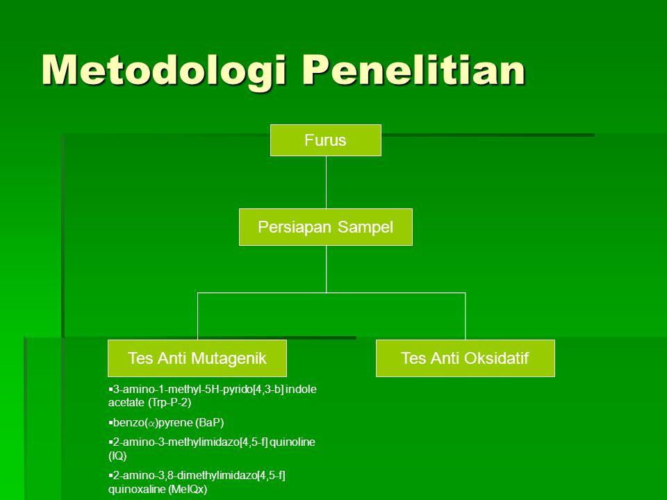 Metodologi Penelitian Furus Persiapan Sampel Tes Anti MutagenikTes Anti Oksidatif  3-amino-1-methyl-5H-pyrido[4,3-b] indole acetate (Trp-P-2)  benzo