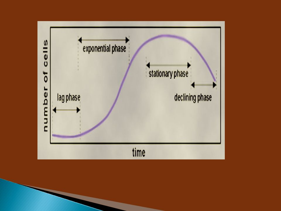 Enzim  sebagai fermen yang bentuknya tidak tertentu dan tidak teratur, yang dapat bekerja tanpa adanya mikroba, dan dapat bekerja di luar mikroba  senyawa organik yang dihasilkan oleh sel-sel hidup Definisi  Enzim berfungsi untuk mempercepat berlangsungnya reaksi kimiawi, tanpa enzim itu sendiri berubah setelah reaksi selesai