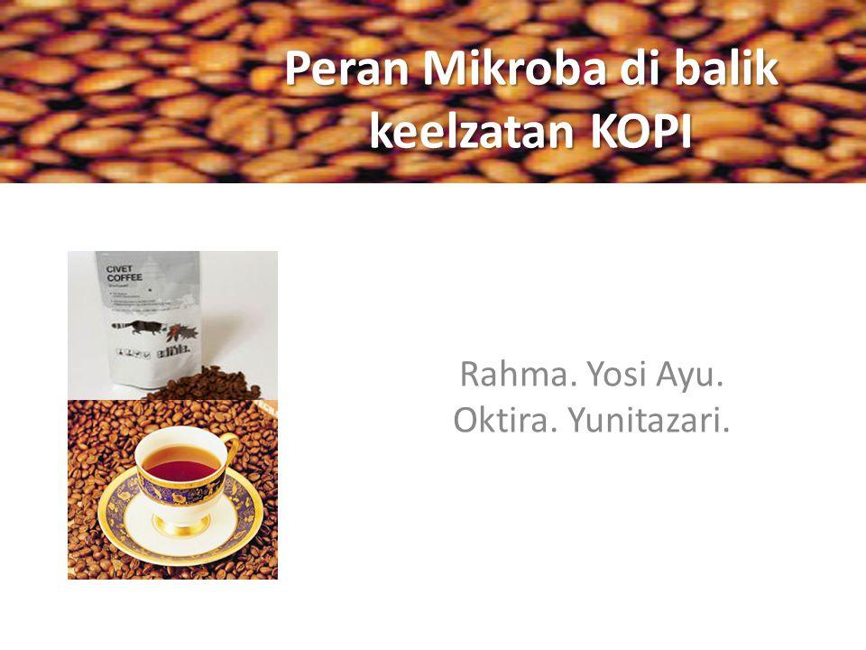 Bakteri dan peran fisiologisnya citarasa yang tercipta adalah hasil metabolisme dan interaksi antar mikroflora  degradasi 60% gula pada biji kopi.