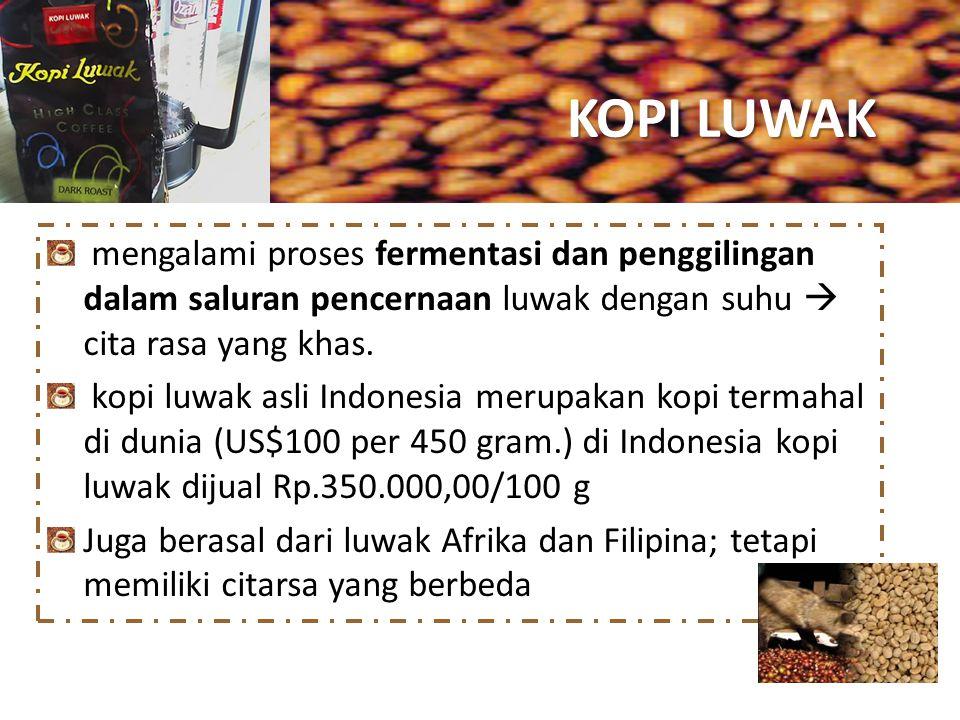 KOPI LUWAK mengalami proses fermentasi dan penggilingan dalam saluran pencernaan luwak dengan suhu  cita rasa yang khas. kopi luwak asli Indonesia me