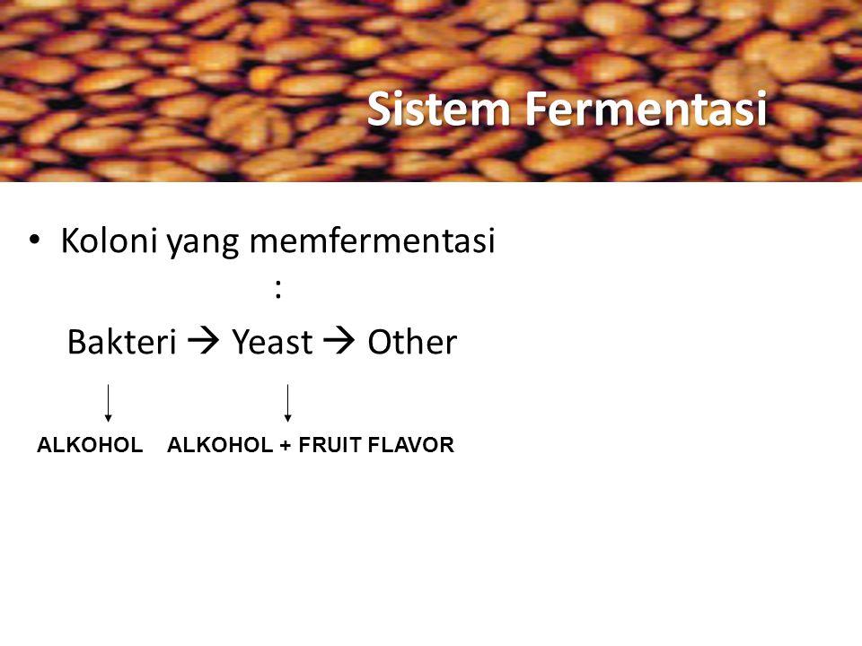 Sistem Fermentasi Koloni yang memfermentasi : Bakteri  Yeast  Other ALKOHOLALKOHOL + FRUIT FLAVOR