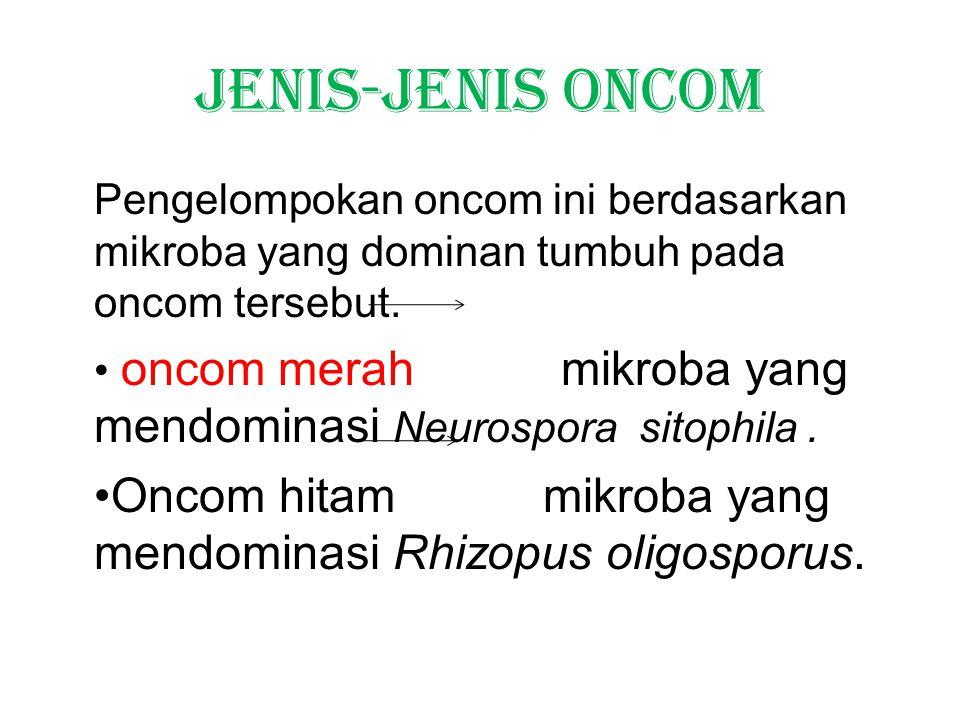 Jenis-jenis oncom Pengelompokan oncom ini berdasarkan mikroba yang dominan tumbuh pada oncom tersebut.