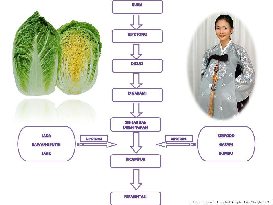 Efek fermentasi Memberikan beberapa keuntungan antara lain : lebih tahan lama, menghilangkan bau yang tidak diinginkan, meningkatkan cita rasa, aroma, warna, tekstur dan kandungan gizi (Suliantari dan Rahayu 1990; Steinkraus 1997).