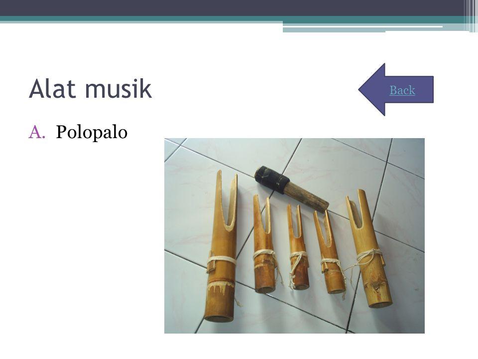 Alat musik A.Polopalo Back