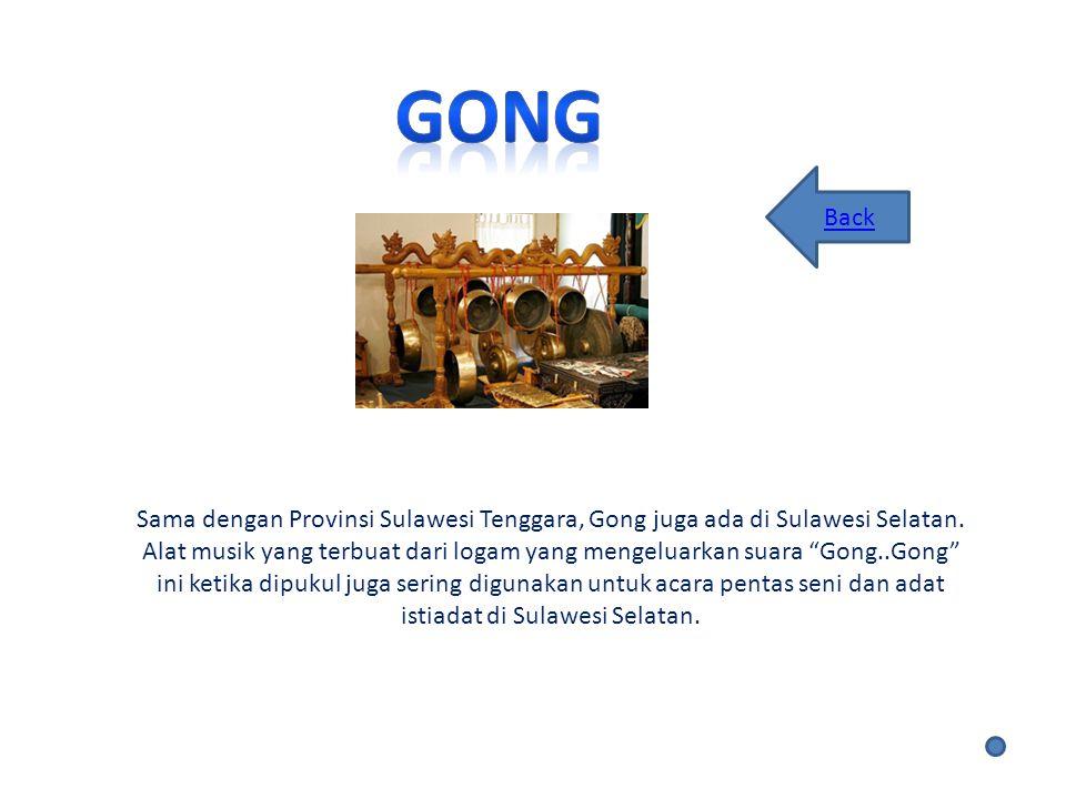 Sama dengan Provinsi Sulawesi Tenggara, Gong juga ada di Sulawesi Selatan.
