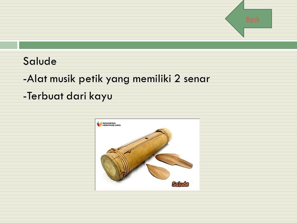 Salude -Alat musik petik yang memiliki 2 senar -Terbuat dari kayu Back