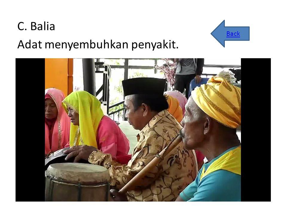 C. Balia Adat menyembuhkan penyakit. Back
