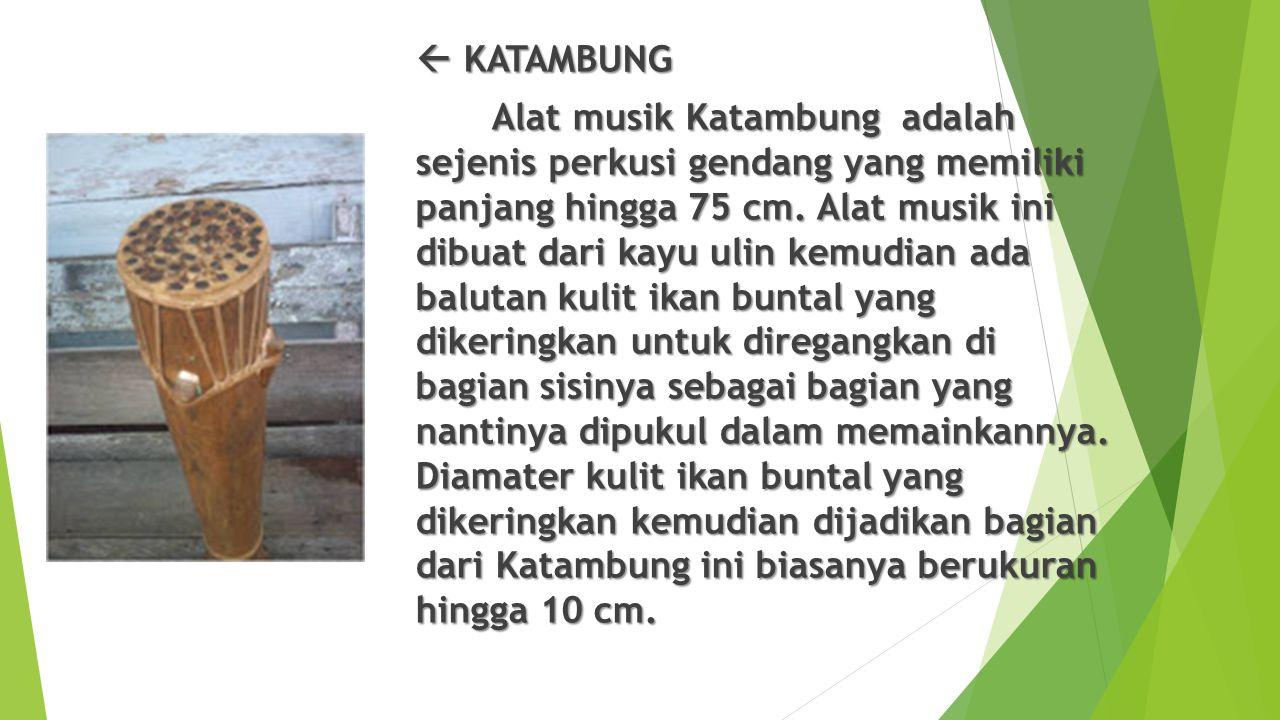  KATAMBUNG Alat musik Katambung adalah sejenis perkusi gendang yang memiliki panjang hingga 75 cm. Alat musik ini dibuat dari kayu ulin kemudian ada