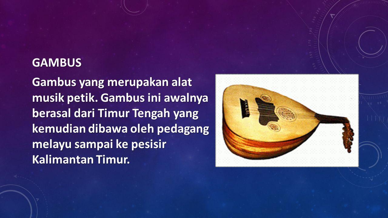 GAMBUS Gambus yang merupakan alat musik petik. Gambus ini awalnya berasal dari Timur Tengah yang kemudian dibawa oleh pedagang melayu sampai ke pesisi