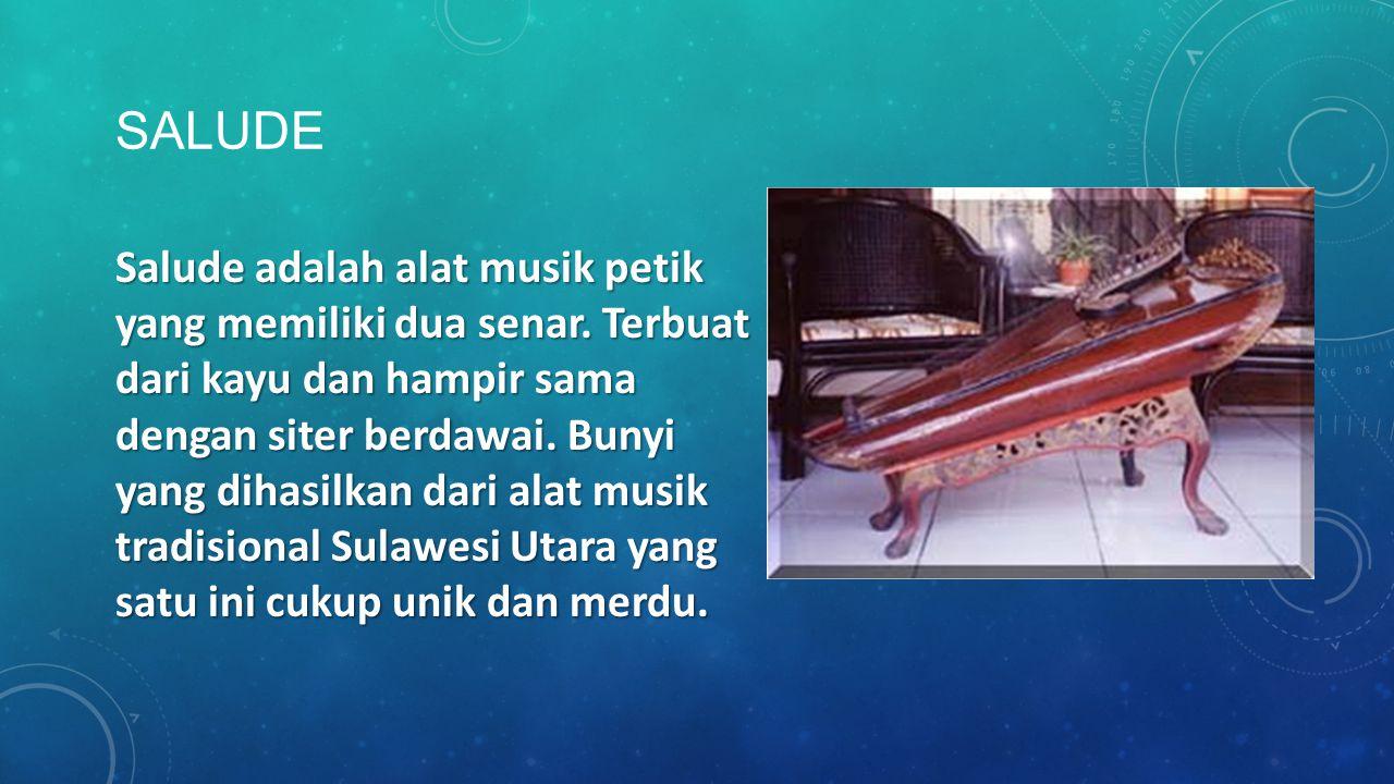 SALUDE Salude adalah alat musik petik yang memiliki dua senar. Terbuat dari kayu dan hampir sama dengan siter berdawai. Bunyi yang dihasilkan dari ala