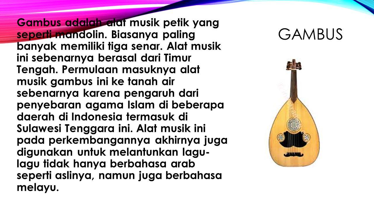 GAMBUS Gambus adalah alat musik petik yang seperti mandolin. Biasanya paling banyak memiliki tiga senar. Alat musik ini sebenarnya berasal dari Timur