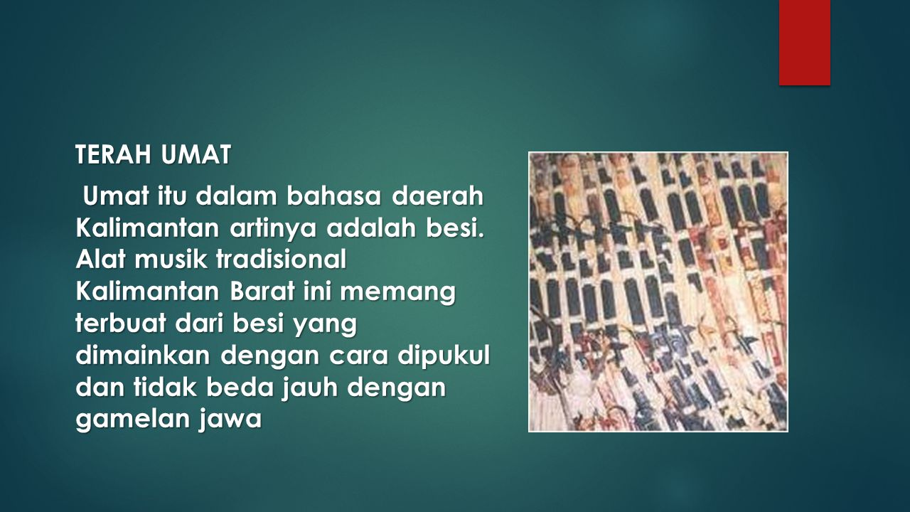 TERAH UMAT Umat itu dalam bahasa daerah Kalimantan artinya adalah besi. Alat musik tradisional Kalimantan Barat ini memang terbuat dari besi yang dima