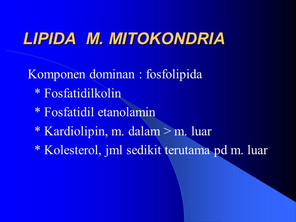 LIPIDA M. MITOKONDRIA Komponen dominan : fosfolipida * Fosfatidilkolin * Fosfatidil etanolamin * Kardiolipin, m. dalam > m. luar * Kolesterol, jml sed