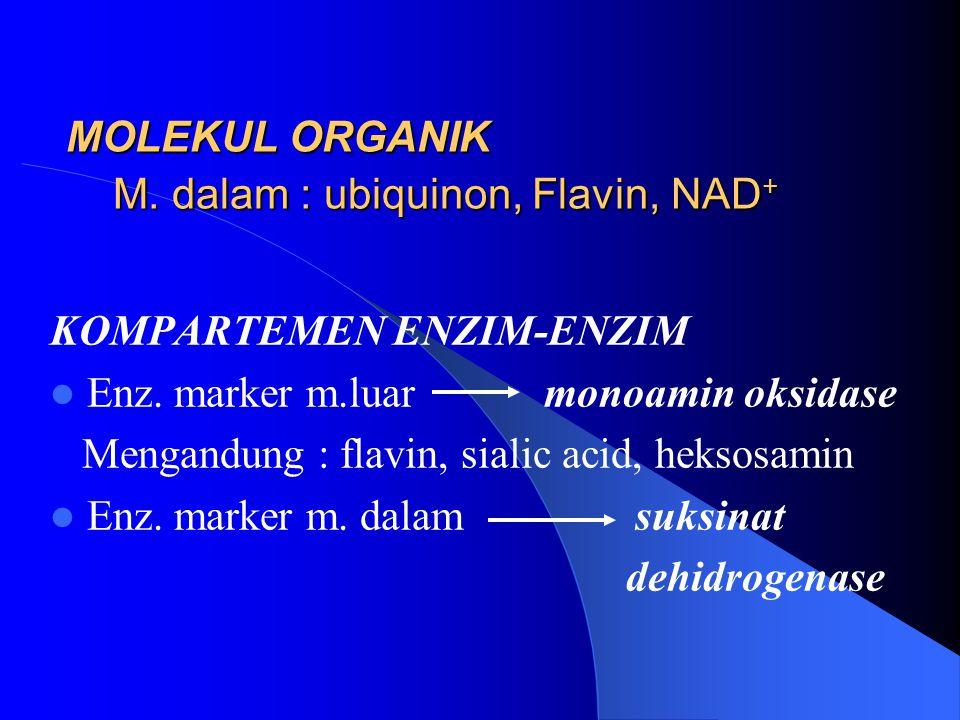 MOLEKUL ORGANIK M. dalam : ubiquinon, Flavin, NAD + KOMPARTEMEN ENZIM-ENZIM Enz. marker m.luar monoamin oksidase Mengandung : flavin, sialic acid, hek