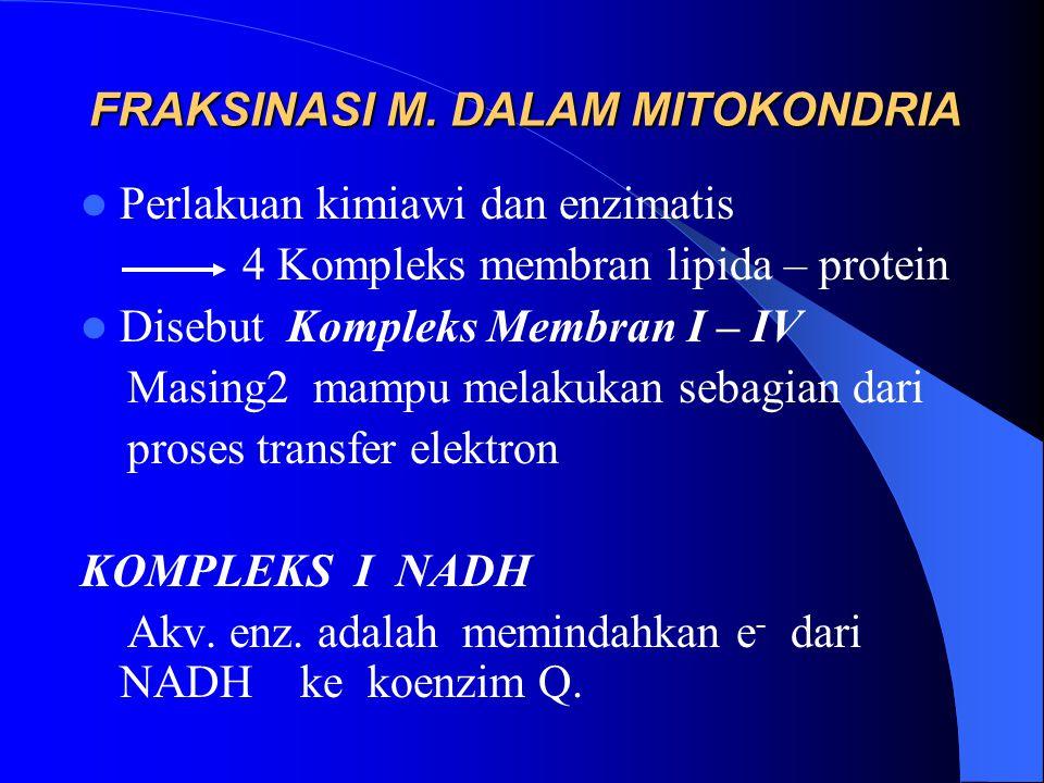 FRAKSINASI M. DALAM MITOKONDRIA Perlakuan kimiawi dan enzimatis 4 Kompleks membran lipida – protein Disebut Kompleks Membran I – IV Masing2 mampu mela