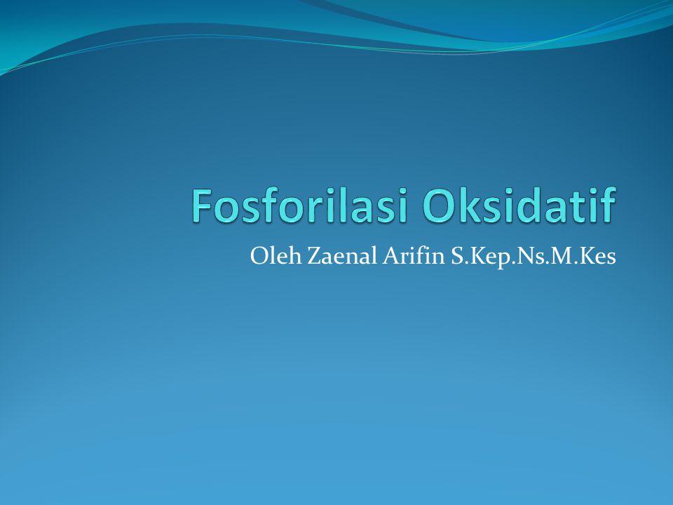 Oleh Zaenal Arifin S.Kep.Ns.M.Kes