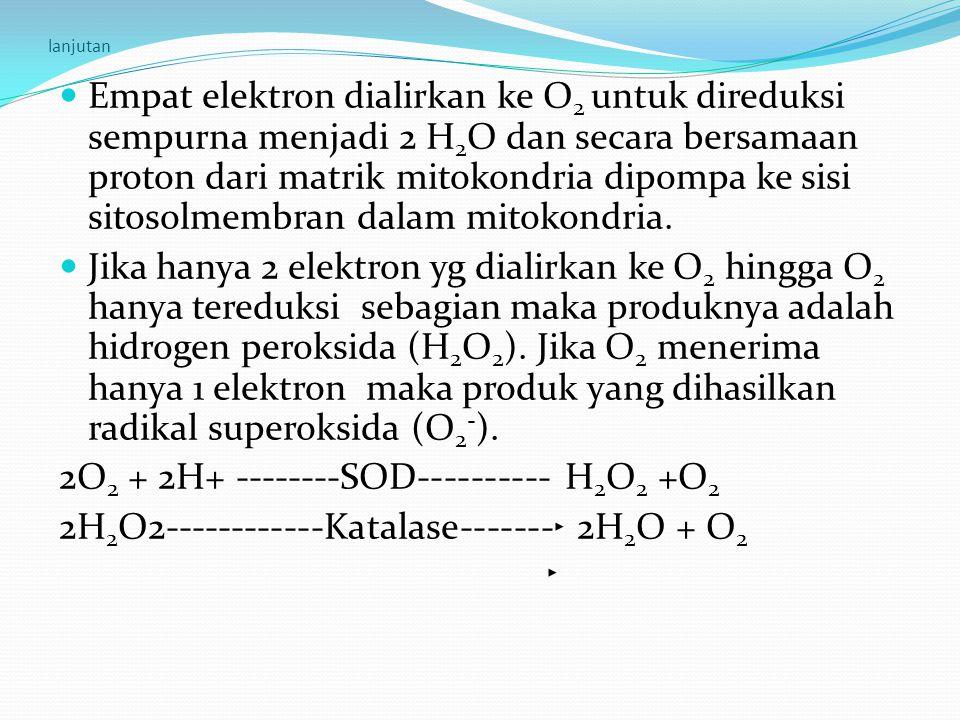 lanjutan Empat elektron dialirkan ke O 2 untuk direduksi sempurna menjadi 2 H 2 O dan secara bersamaan proton dari matrik mitokondria dipompa ke sisi
