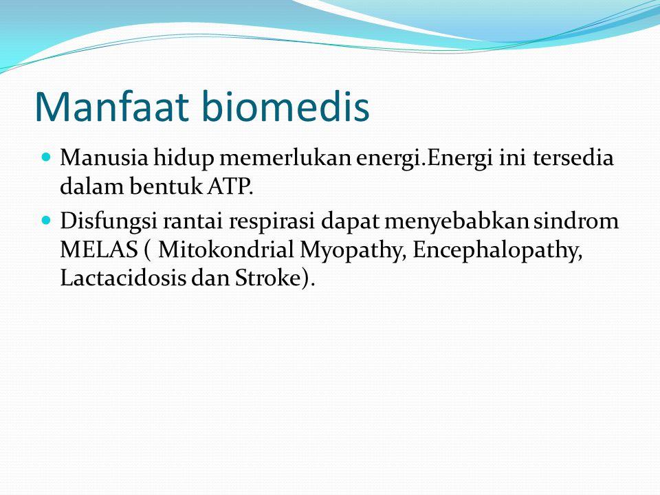 Manfaat biomedis Manusia hidup memerlukan energi.Energi ini tersedia dalam bentuk ATP. Disfungsi rantai respirasi dapat menyebabkan sindrom MELAS ( Mi