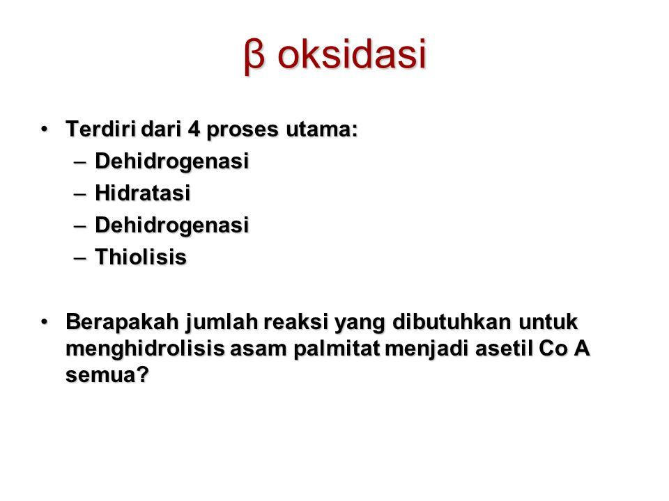 β oksidasi Terdiri dari 4 proses utama:Terdiri dari 4 proses utama: –Dehidrogenasi –Hidratasi –Dehidrogenasi –Thiolisis Berapakah jumlah reaksi yang dibutuhkan untuk menghidrolisis asam palmitat menjadi asetil Co A semua?Berapakah jumlah reaksi yang dibutuhkan untuk menghidrolisis asam palmitat menjadi asetil Co A semua?