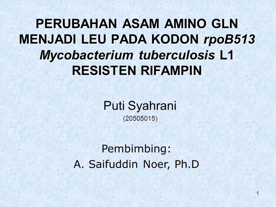 1 PERUBAHAN ASAM AMINO GLN MENJADI LEU PADA KODON rpoB513 Mycobacterium tuberculosis L1 RESISTEN RIFAMPIN Puti Syahrani (20505015) Pembimbing: A.
