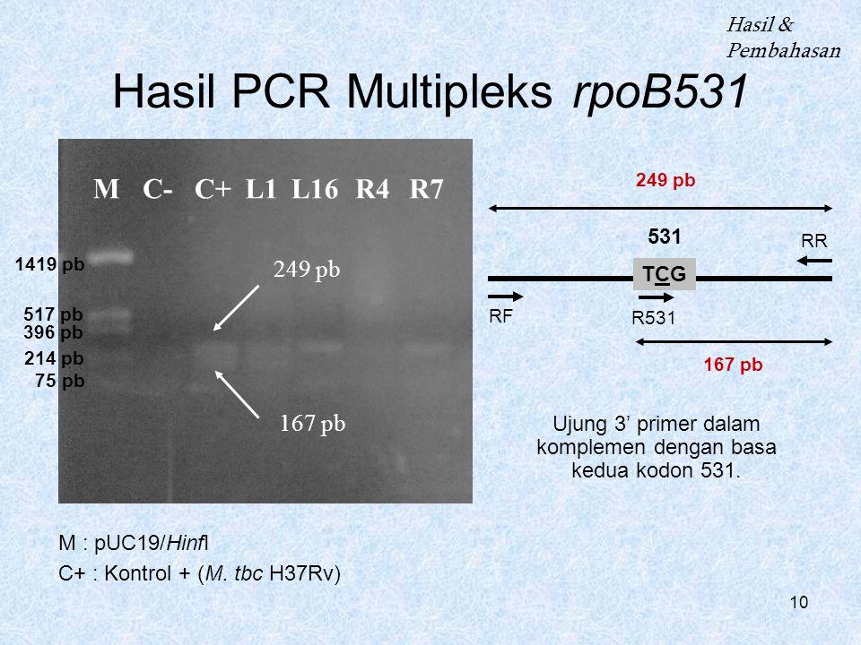 10 MC- L1C+L16R4R7 249 pb 167 pb Hasil PCR Multipleks rpoB531 M : pUC19/HinfI C+ : Kontrol + (M. tbc H37Rv) Hasil & Pembahasan 249 pb 167 pb 1419 pb 5