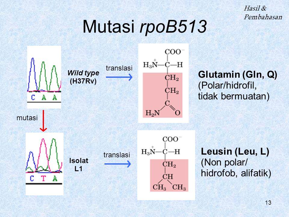 13 Mutasi rpoB513 Wild type (H37Rv) Isolat L1 Glutamin (Gln, Q) (Polar/hidrofil, tidak bermuatan) Leusin (Leu, L) (Non polar/ hidrofob, alifatik) Hasil & Pembahasan mutasi translasi