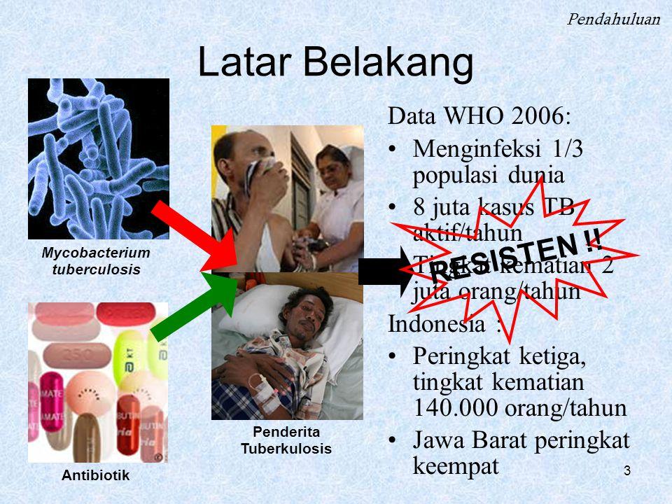 3 Latar Belakang Data WHO 2006: Menginfeksi 1/3 populasi dunia 8 juta kasus TB aktif/tahun Tingkat kematian 2 juta orang/tahun Indonesia : Peringkat ketiga, tingkat kematian 140.000 orang/tahun Jawa Barat peringkat keempat Pendahuluan Mycobacterium tuberculosis Antibiotik Penderita Tuberkulosis RESISTEN !!