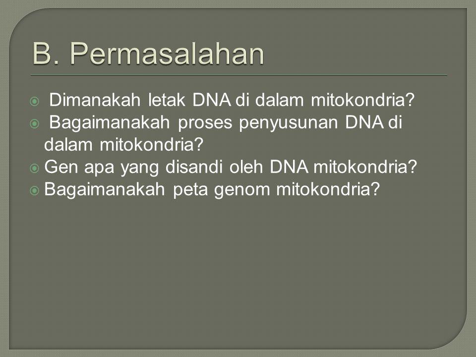  Mengetahui letak DNA di dalam mitokondria.