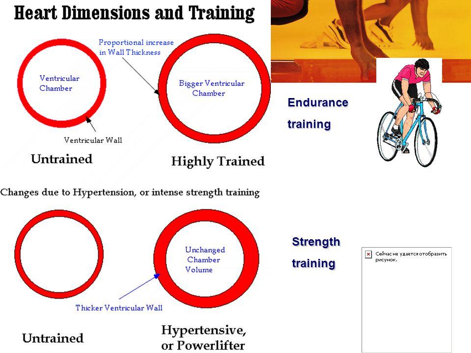 Strengthtraining Endurancetraining