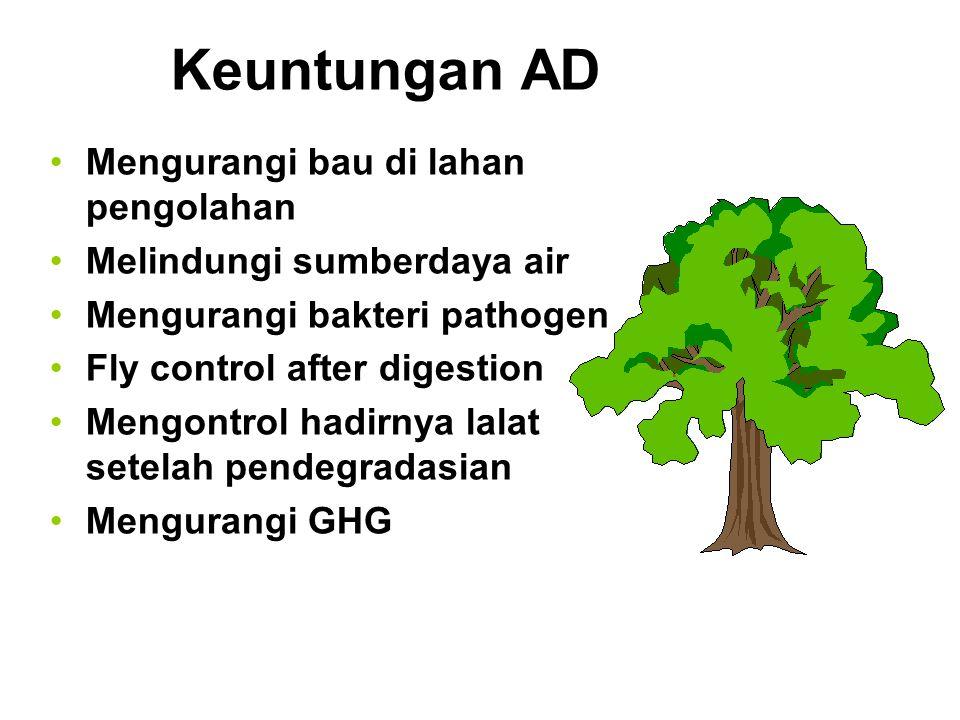 Keuntungan AD Mengurangi bau di lahan pengolahan Melindungi sumberdaya air Mengurangi bakteri pathogen Fly control after digestion Mengontrol hadirnya lalat setelah pendegradasian Mengurangi GHG