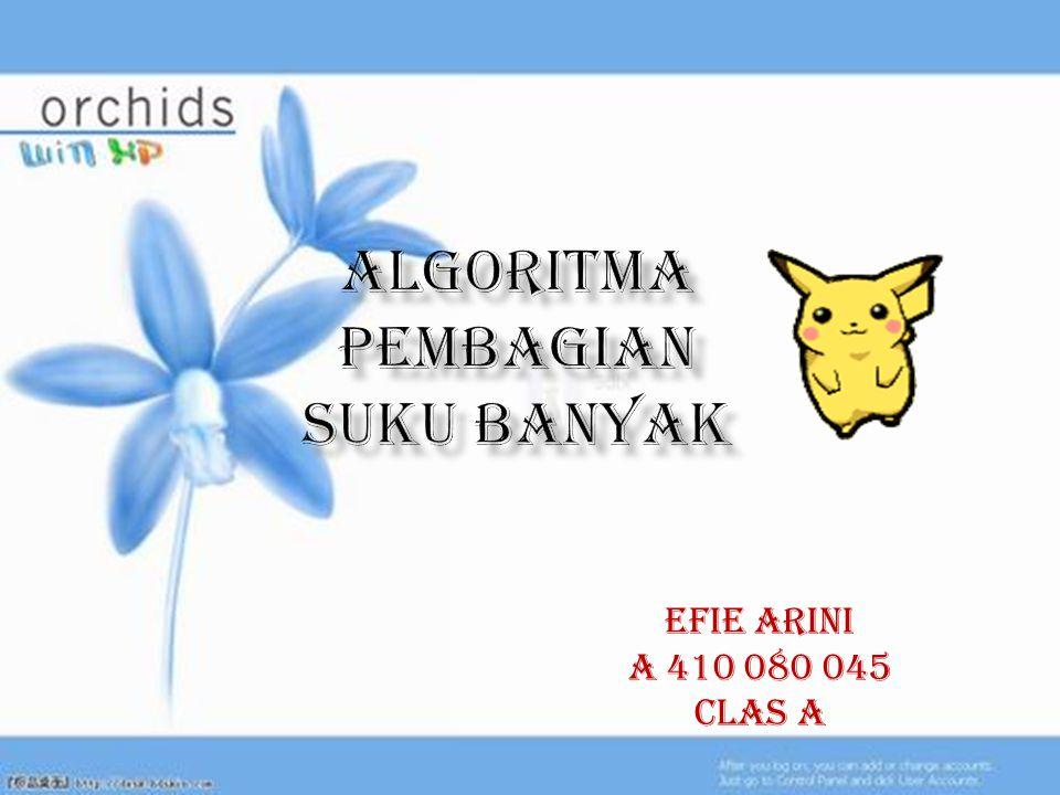 EFIE ARINI A 410 080 045 Clas A