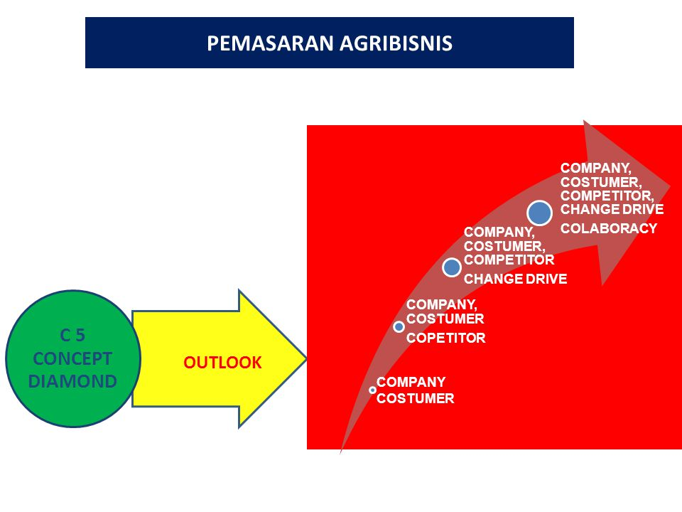 PEMASARAN AGRIBISNIS C 5 CONCEPT DIAMOND COMPANY, COSTUMER COPETITOR COMPANY, COSTUMER, COMPETITOR CHANGE DRIVE COMPANY, COSTUMER, COMPETITOR, CHANGE DRIVE COLABORACY OUTLOOK COMPANY COSTUMER