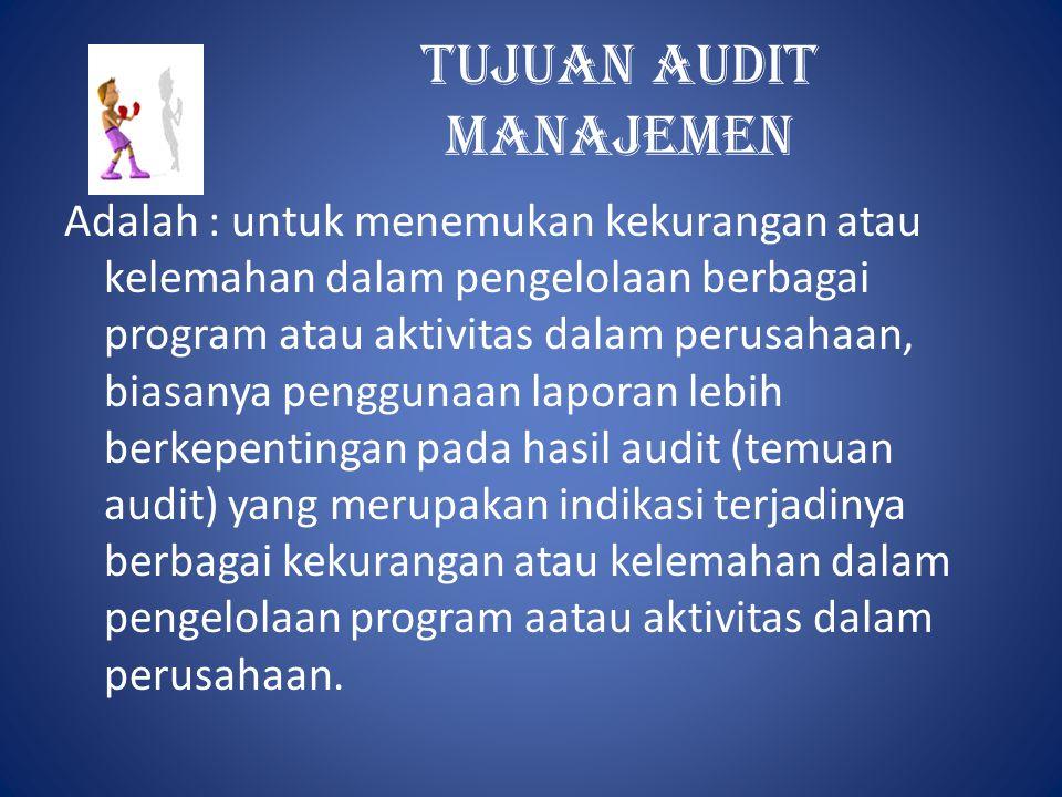 Informasi latar belakang Pada bagian ini auditor harus mampu memberikan gambaran umum tentang tujuan dan karakterisik perusahaan serta program atau aktifitas yang diaudit, sifat, ukuran program, serta organisasi manajemennya.