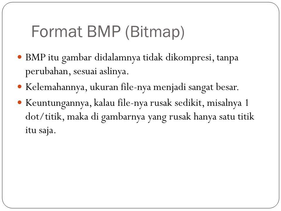 Format BMP ( Bitmap) BMP itu gambar didalamnya tidak dikompresi, tanpa perubahan, sesuai aslinya.