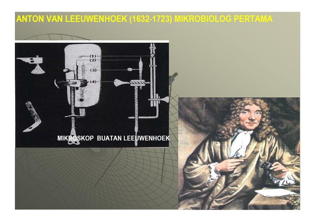 Gb.Bakteri hasi penemuan Anthon van Leeuwenhoek A.