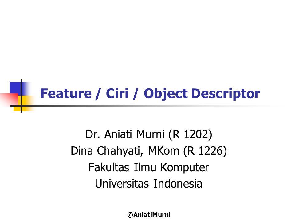 2 Definisi Feature / Ciri / Object Deskriptor Feature atau ciri (fitur) merupakan suatu deskriptor yang menggambarkan karakteristik dari obyek.