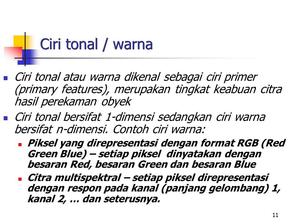 12 Ciri tonal : citra inderaja pankromatik Ciri tonal merupakan ciri primer (primary features), sensor SPOT pankromatik (gray levels), jumlah band 1, resolusi brightness 256 dan resolusi spasial 10 m 2.