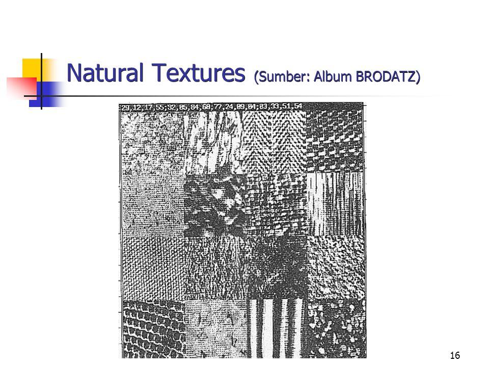 17 Hypothetical Textures (Sumber: Suyanto, 1990)