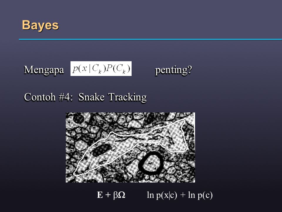 Bayes Mengapa penting? Contoh #4: Snake Tracking Mengapa penting? Contoh #4: Snake Tracking E +  ln p(x|c) + ln p(c)